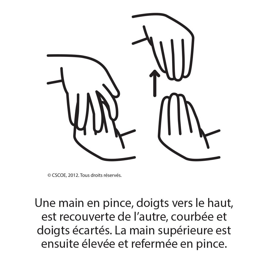 Poire_NB