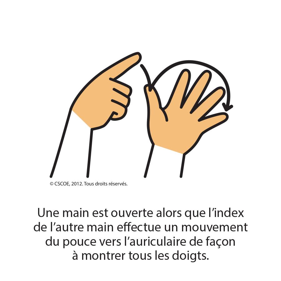 Lequel_txt