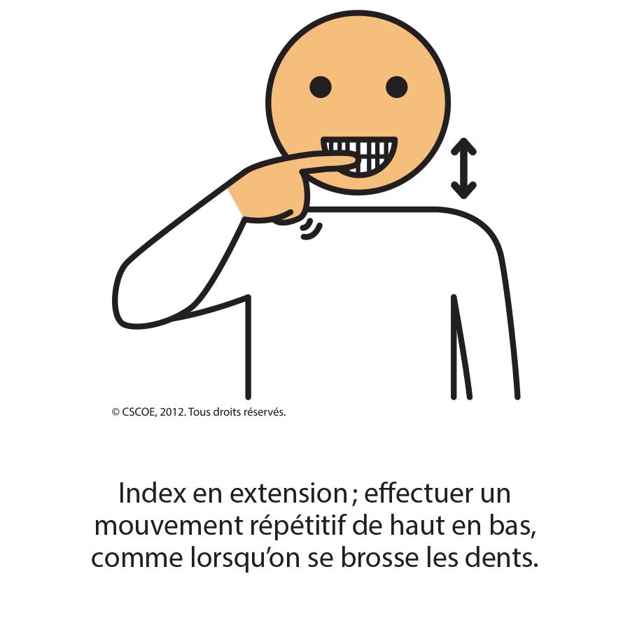 Brosse à dents_txt