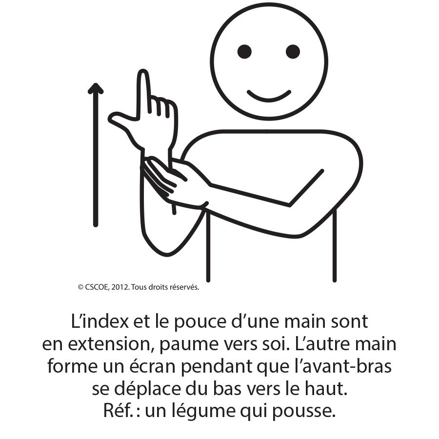 Légume_NB