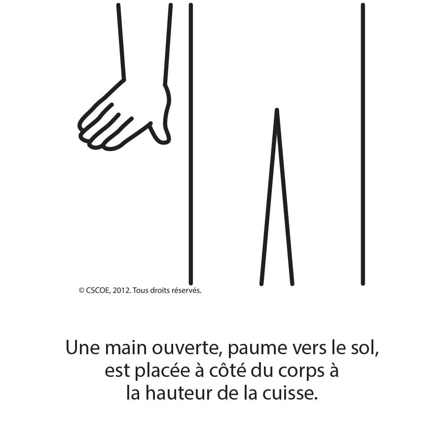 Petit_txt_NB